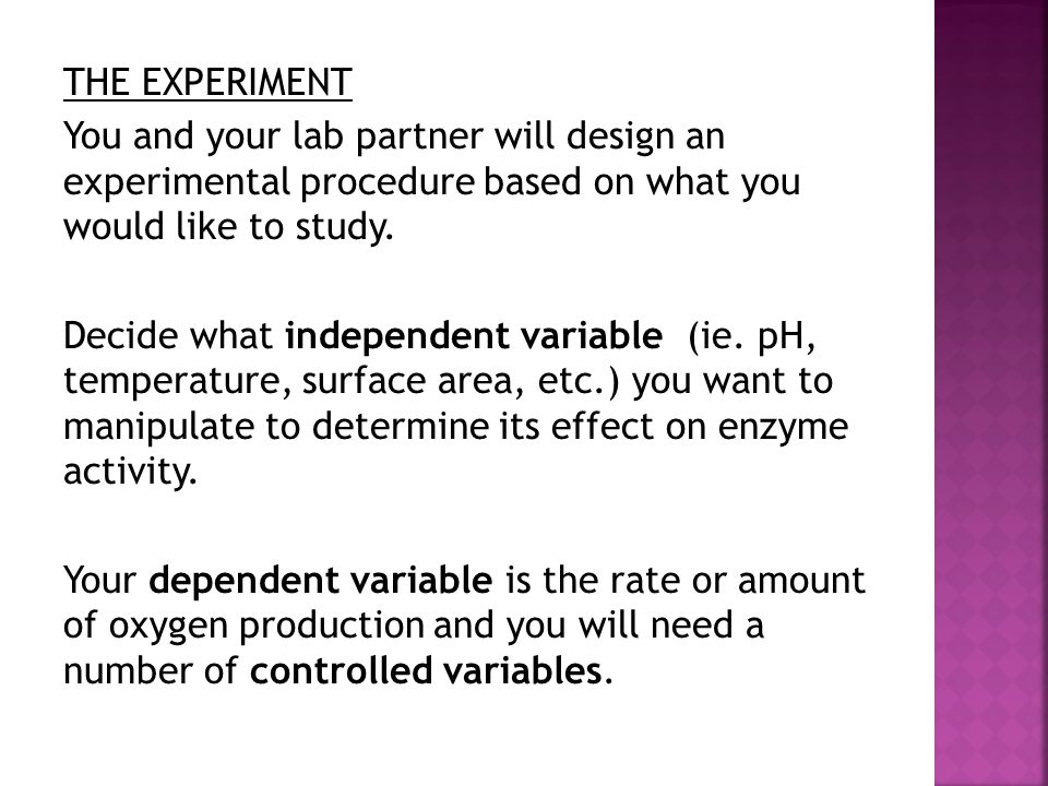 THE EXPERIMENT You and your lab partner will design an experimental procedure based on what you would like to study.
