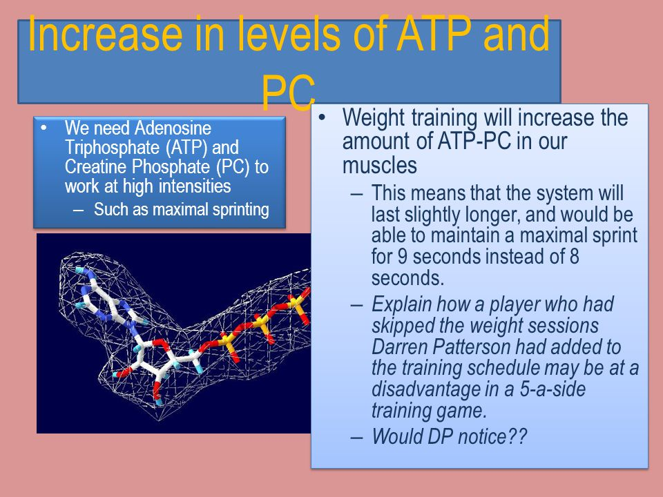 Increase in levels of ATP and PC