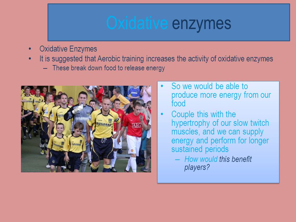 Oxidative enzymes Oxidative Enzymes. It is suggested that Aerobic training increases the activity of oxidative enzymes.