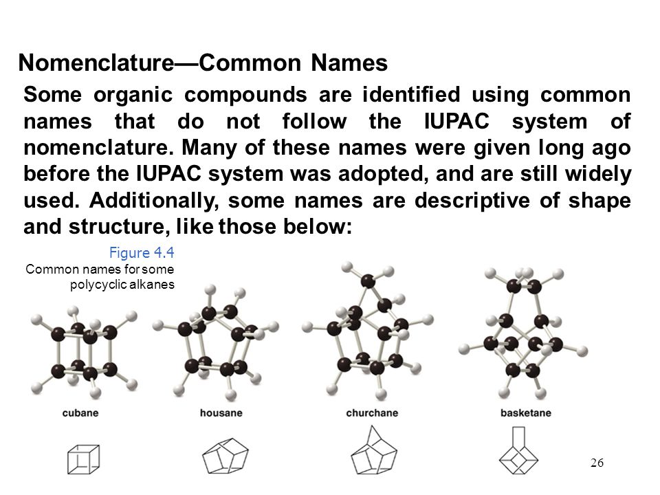 Nomenclature—Common Names