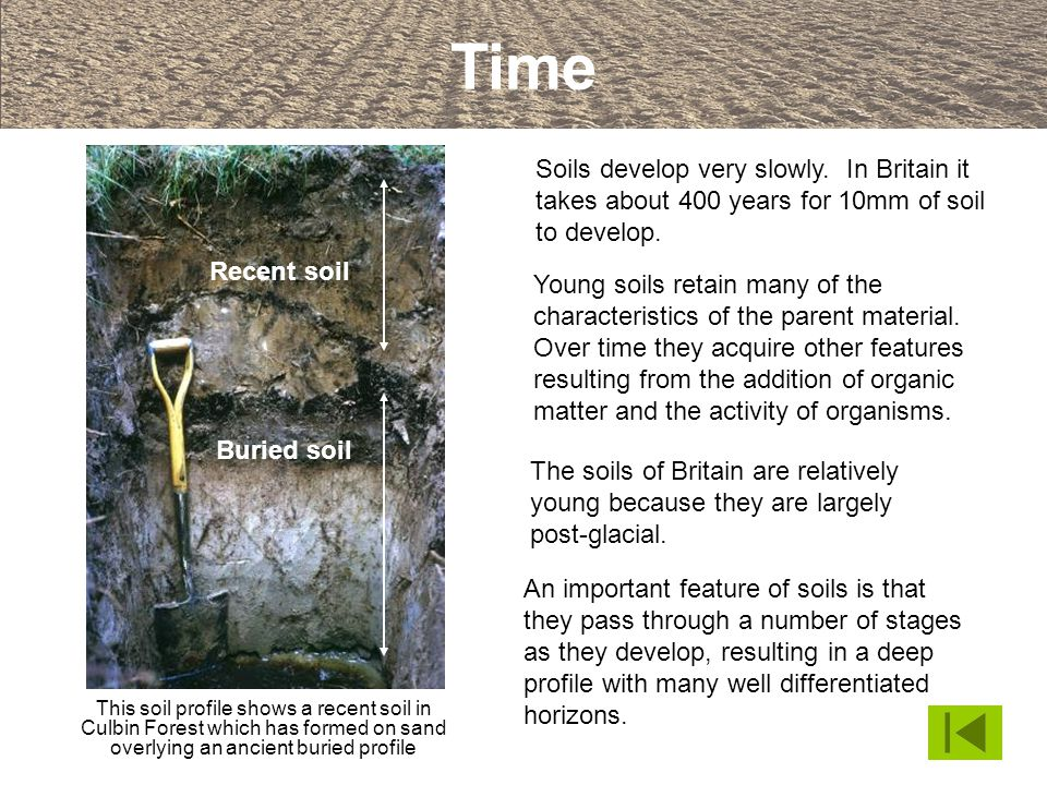 Time Soils develop very slowly. In Britain it takes about 400 years for 10mm of soil to develop.