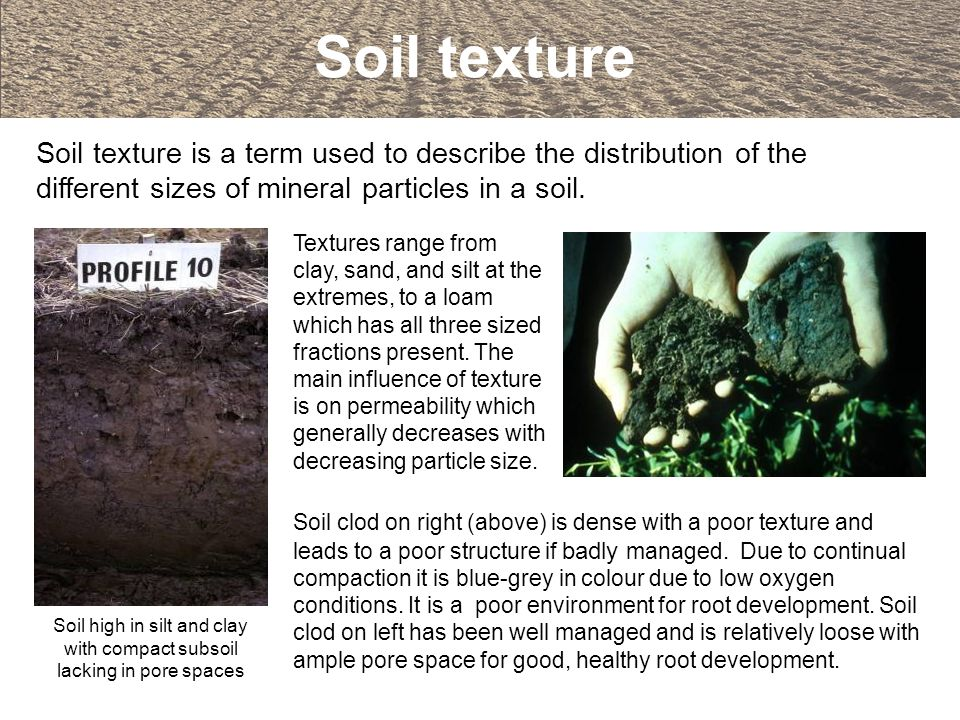 Soil high in silt and clay with compact subsoil lacking in pore spaces
