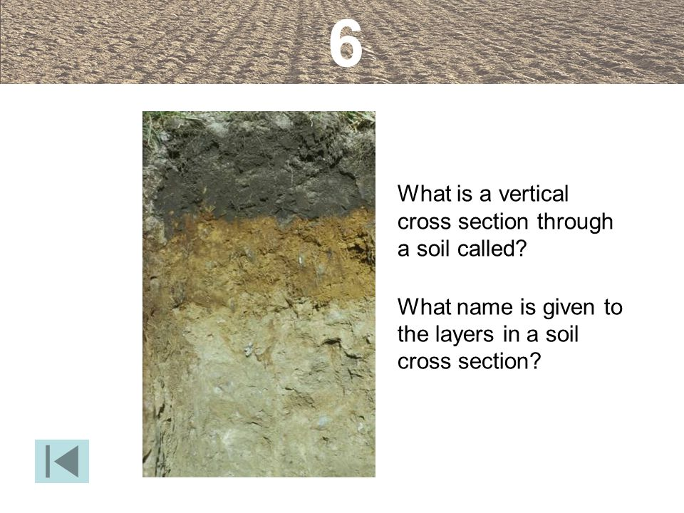 6 What is a vertical cross section through a soil called