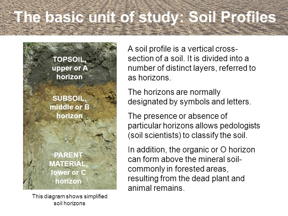 An introduction to soils and soil terminology ppt video for Soil 5 letters