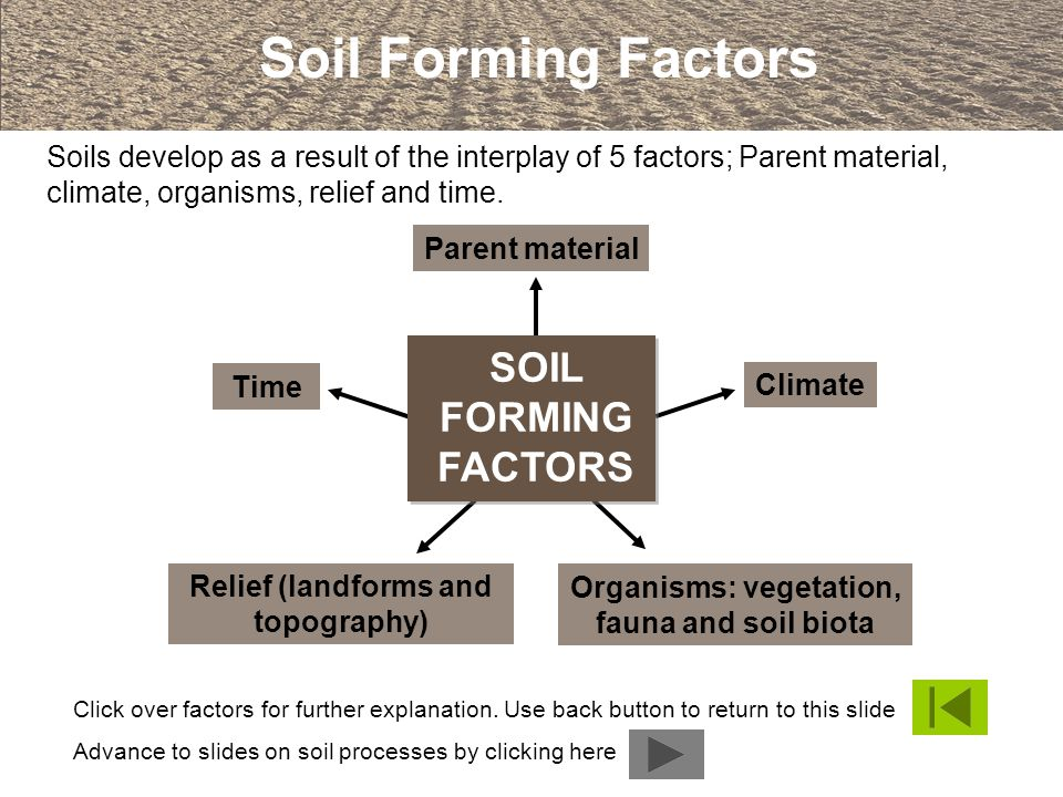 An introduction to soils and soil terminology ppt video for Soil forming factors