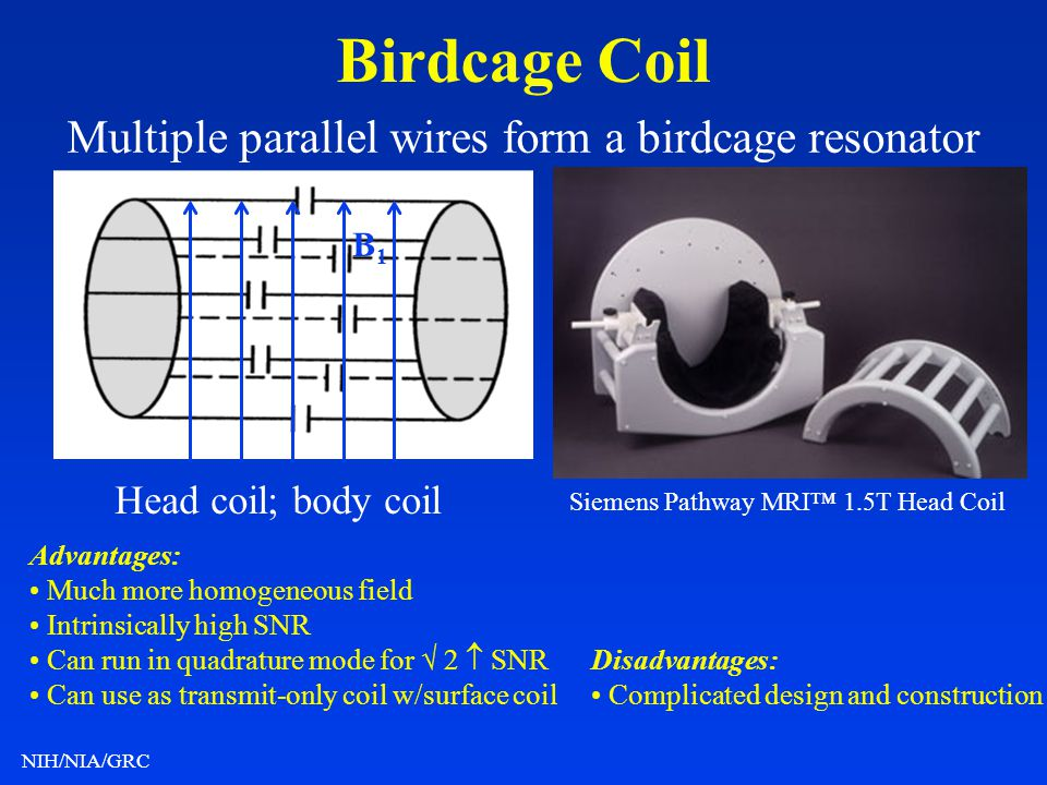 Multiple parallel wires form a birdcage resonator