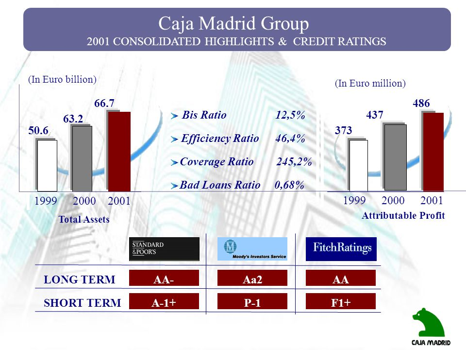 2001 CONSOLIDATED HIGHLIGHTS & CREDIT RATINGS