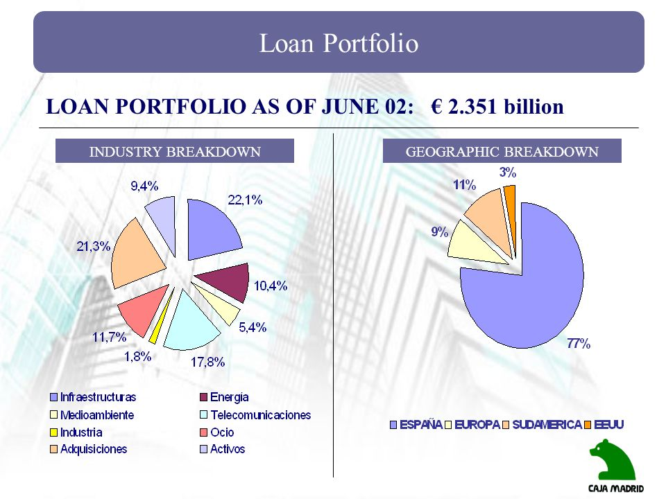 Loan Portfolio LOAN PORTFOLIO AS OF JUNE 02: € billion