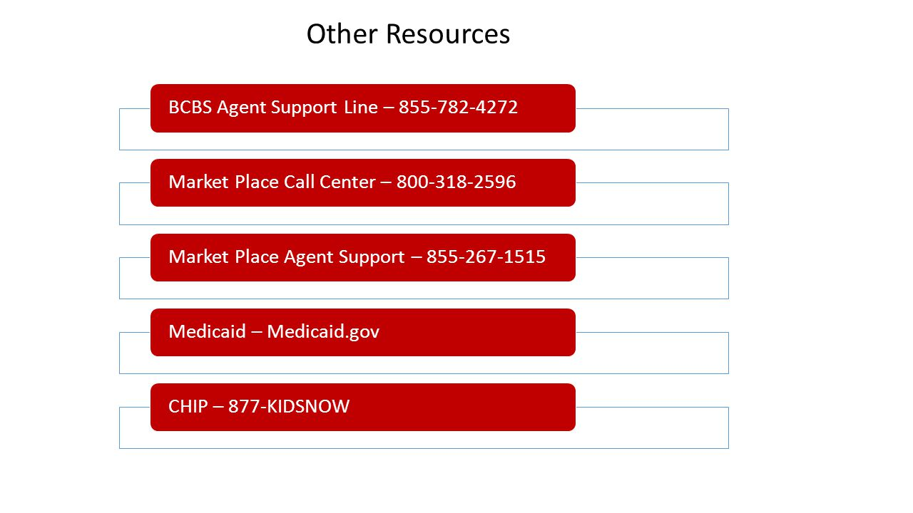 Other Resources BCBS Agent Support Line – 855-782-4272