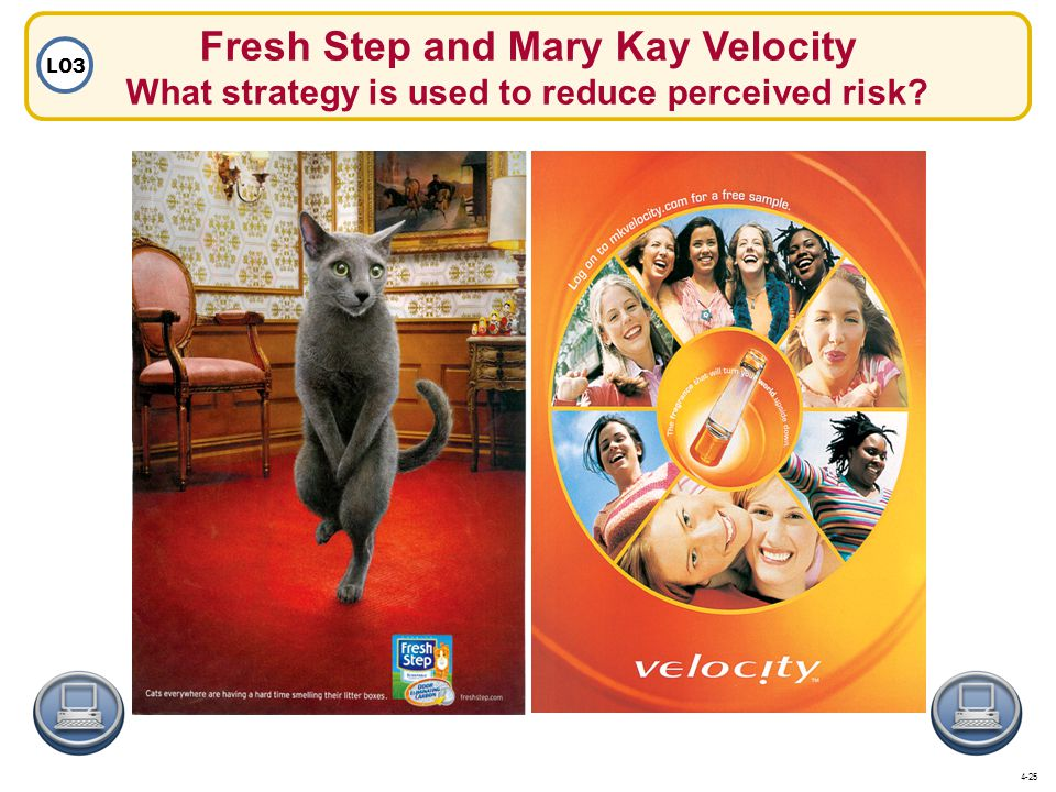 Fresh Step and Mary Kay Velocity What strategy is used to reduce perceived risk