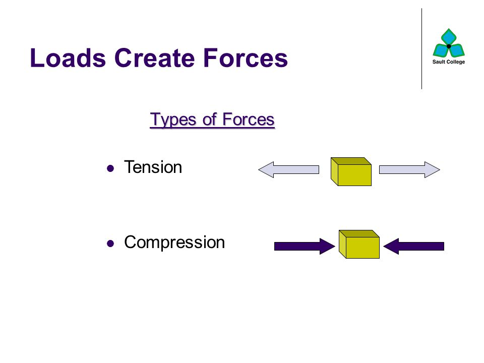 Loads Create Forces Types of Forces Tension Compression