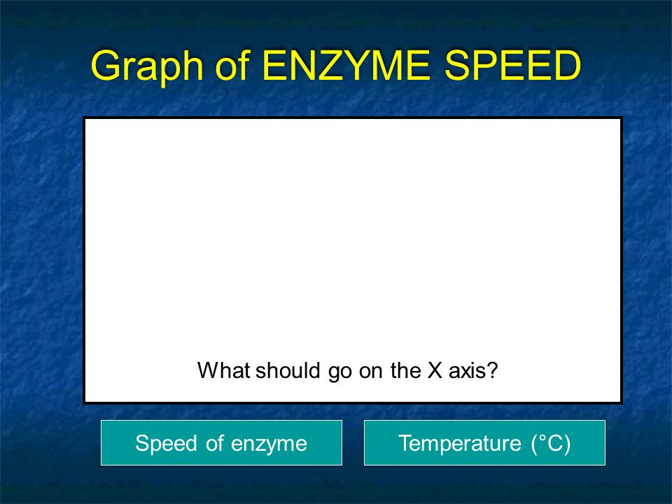 Graph of ENZYME SPEED What should go on the X axis Speed of enzyme