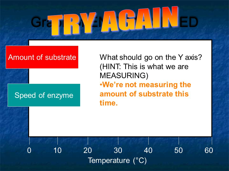 Graph of ENZYME SPEED TRY AGAIN Amount of substrate