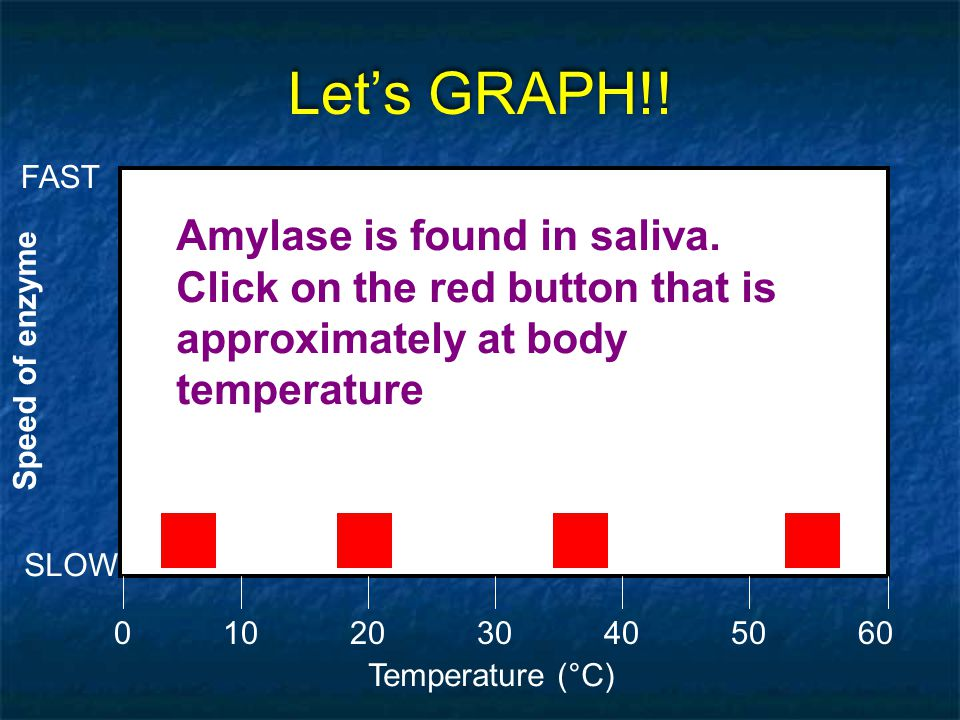 Let's GRAPH!! FAST. Amylase is found in saliva. Click on the red button that is approximately at body temperature.