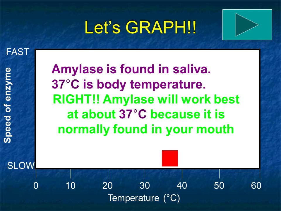 Let's GRAPH!! Amylase is found in saliva. 37°C is body temperature.