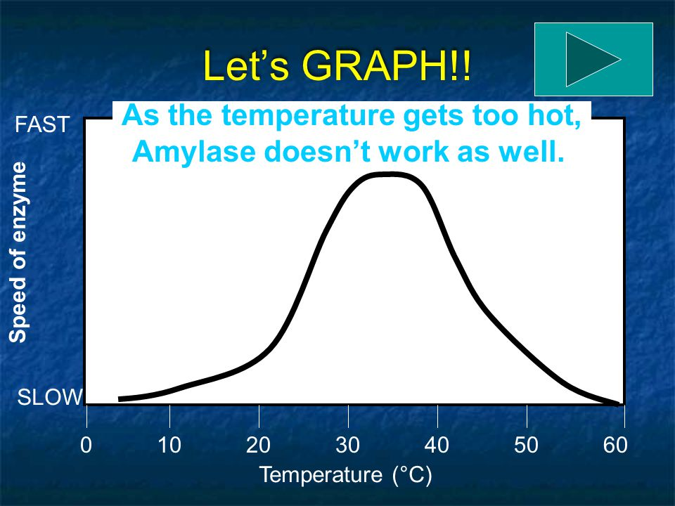As the temperature gets too hot, Amylase doesn't work as well.