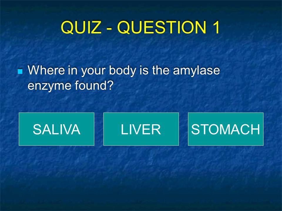 QUIZ - QUESTION 1 SALIVA LIVER STOMACH