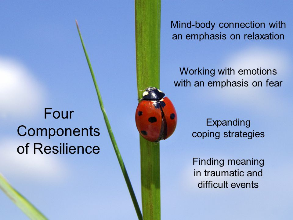 Four Components of Resilience