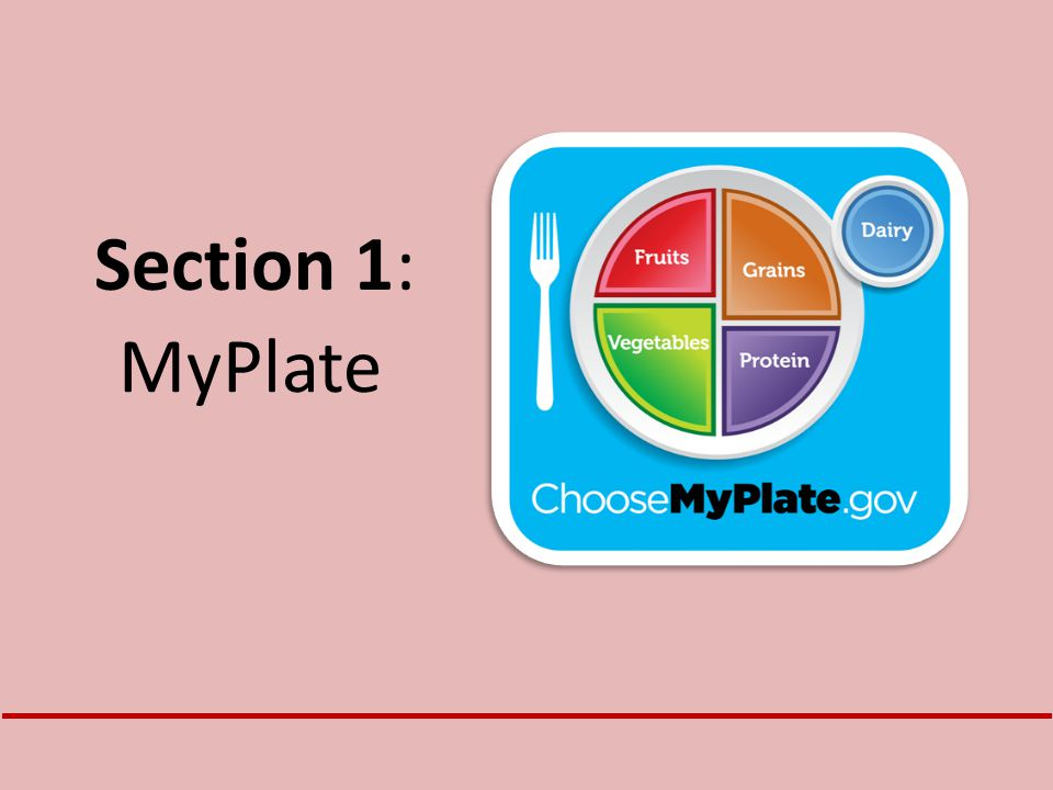 Section 1: MyPlate