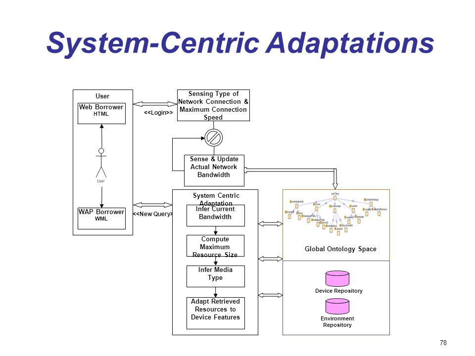 System-Centric Adaptations