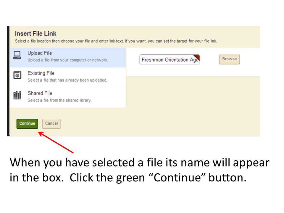 When you have selected a file its name will appear in the box