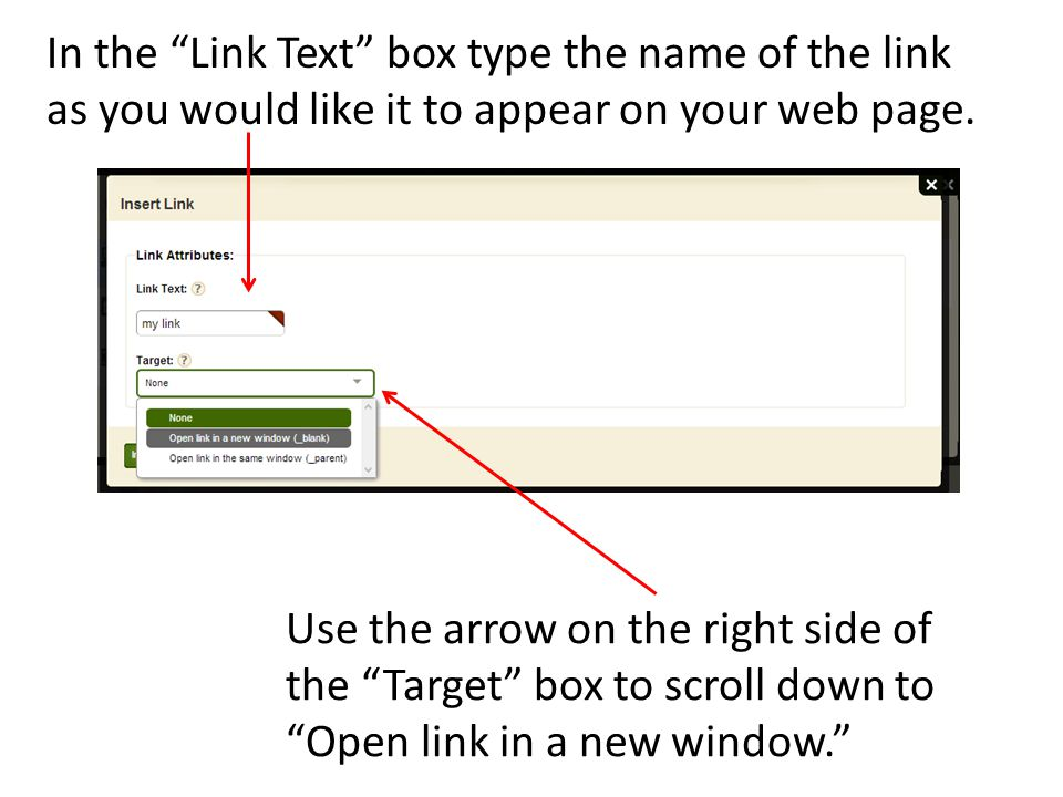 In the Link Text box type the name of the link as you would like it to appear on your web page.