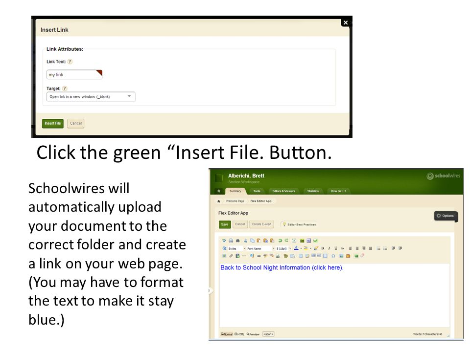 Click the green Insert File. Button.