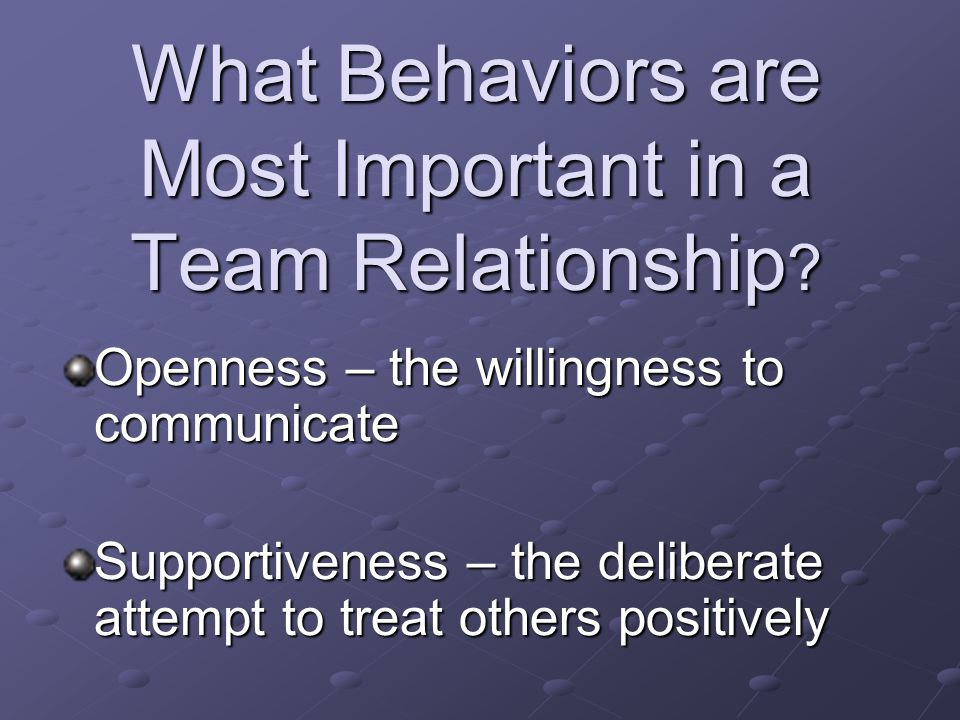 What Behaviors are Most Important in a Team Relationship