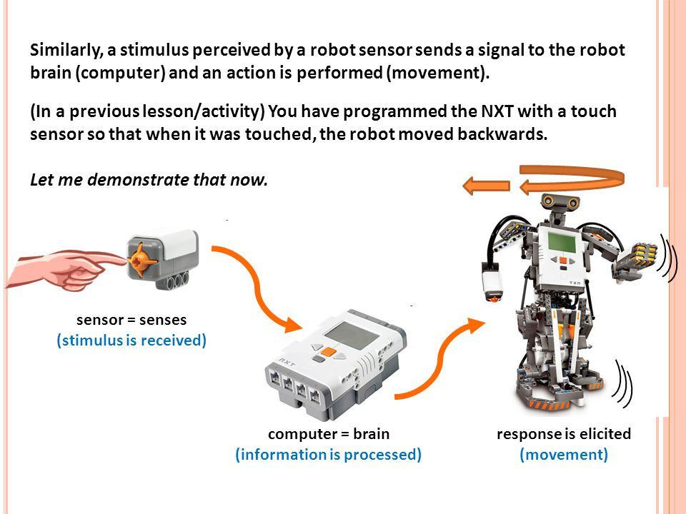 Similarly, a stimulus perceived by a robot sensor sends a signal to the robot brain (computer) and an action is performed (movement). (In a previous lesson/activity) You have programmed the NXT with a touch sensor so that when it was touched, the robot moved backwards. Let me demonstrate that now.