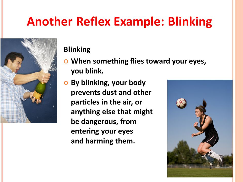 Another Reflex Example: Blinking