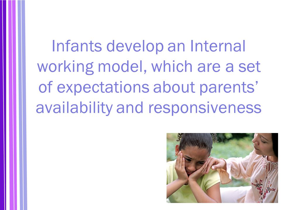 Infants develop an Internal working model, which are a set of expectations about parents' availability and responsiveness