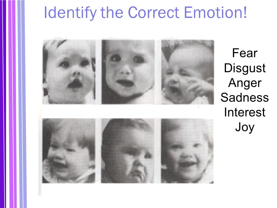 Identify the Correct Emotion!