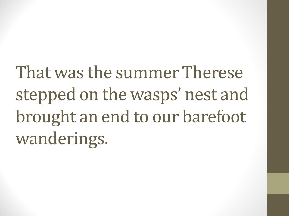 That was the summer Therese stepped on the wasps' nest and brought an end to our barefoot wanderings.
