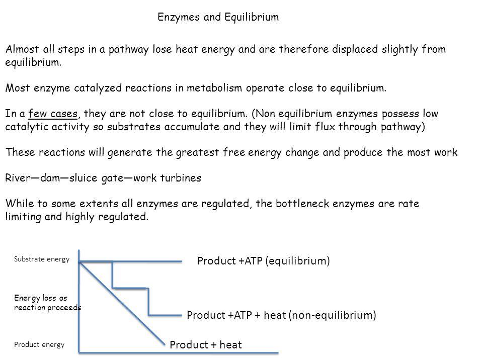 Product +ATP (equilibrium)