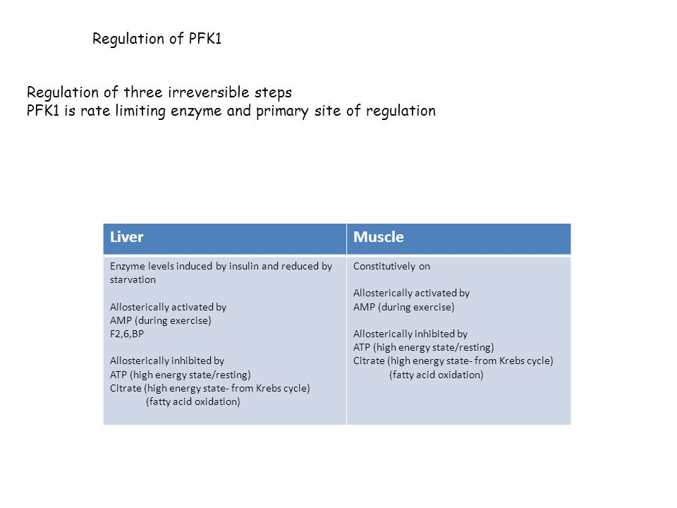 Liver Muscle Regulation of PFK1 Regulation of three irreversible steps