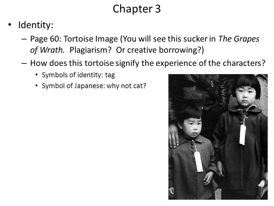 Chapter 3 Identity: Page 60: Tortoise Image (You will see this sucker in The Grapes of Wrath. Plagiarism Or creative borrowing )