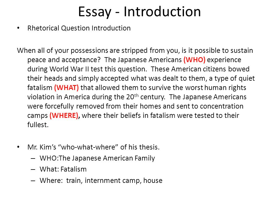 Essay - Introduction Rhetorical Question Introduction