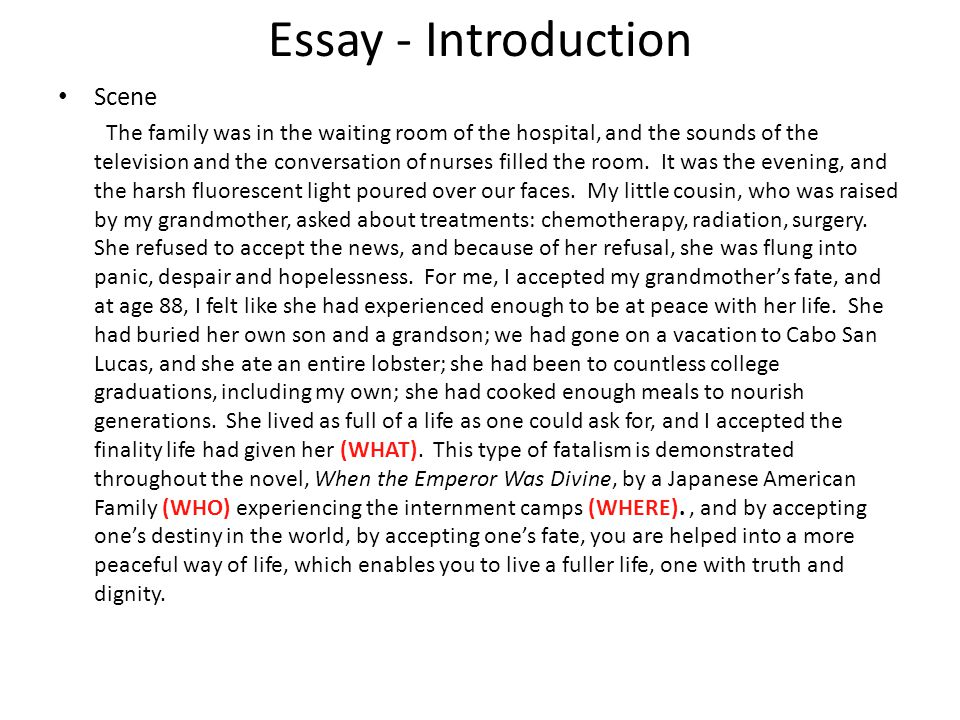 Essay - Introduction Scene