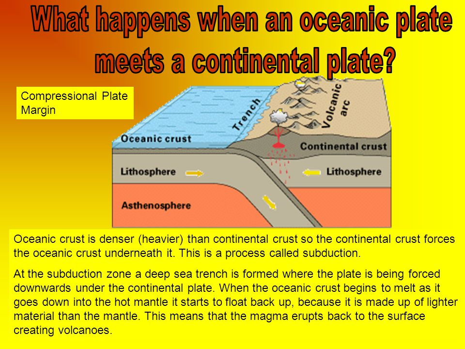 What happens when an oceanic plate meets a continental plate