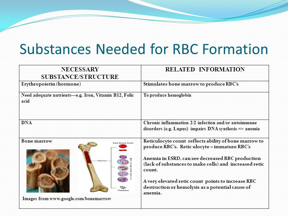 Substances Needed for RBC Formation