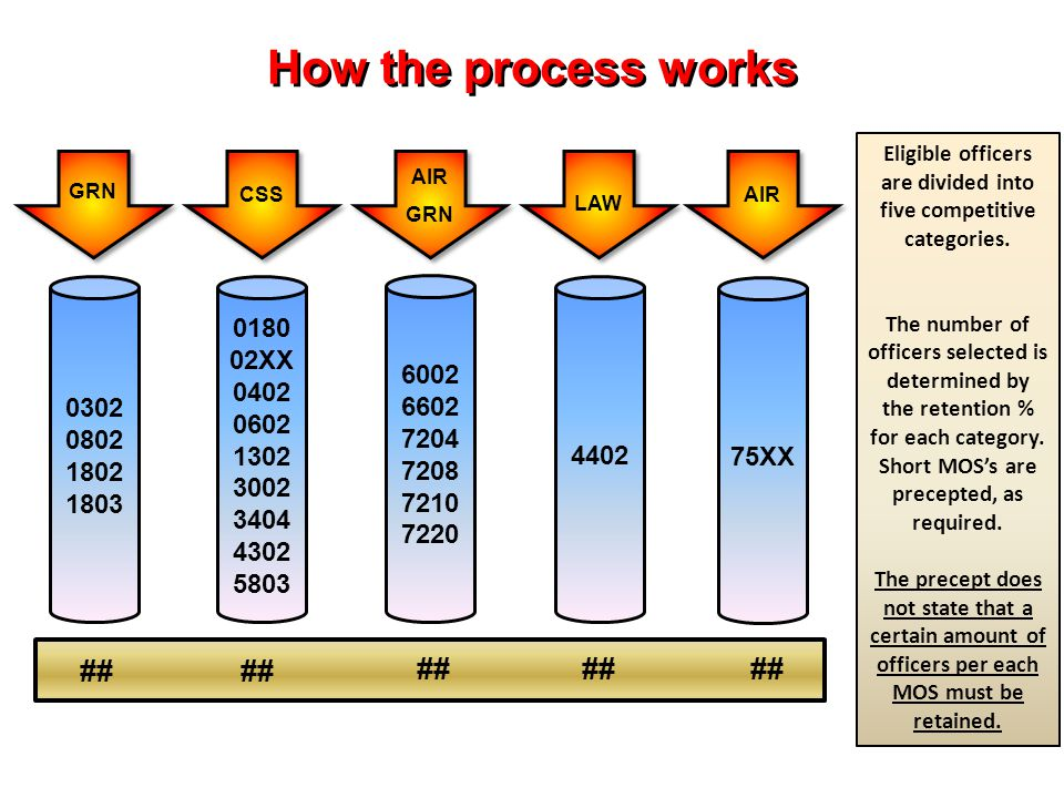 How the process works ## LAW 0302 0802 1802 1803 0180 02XX 0402 0602