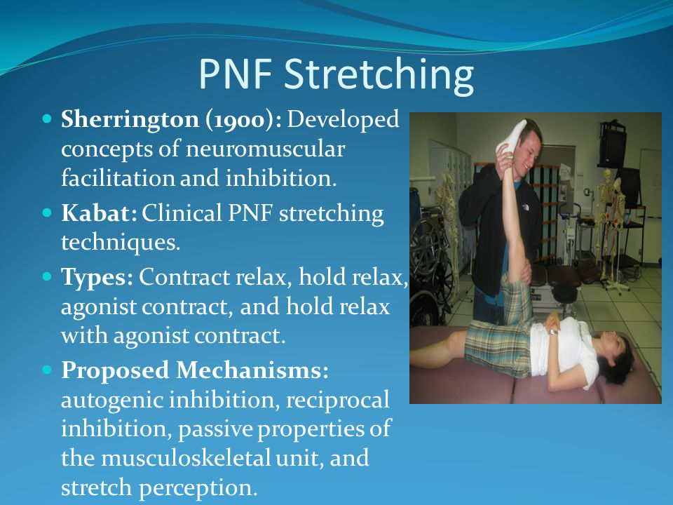 PNF Stretching Sherrington (1900): Developed concepts of neuromuscular facilitation and inhibition.