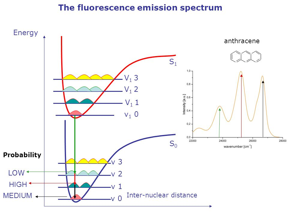 The fluorescence emission spectrum