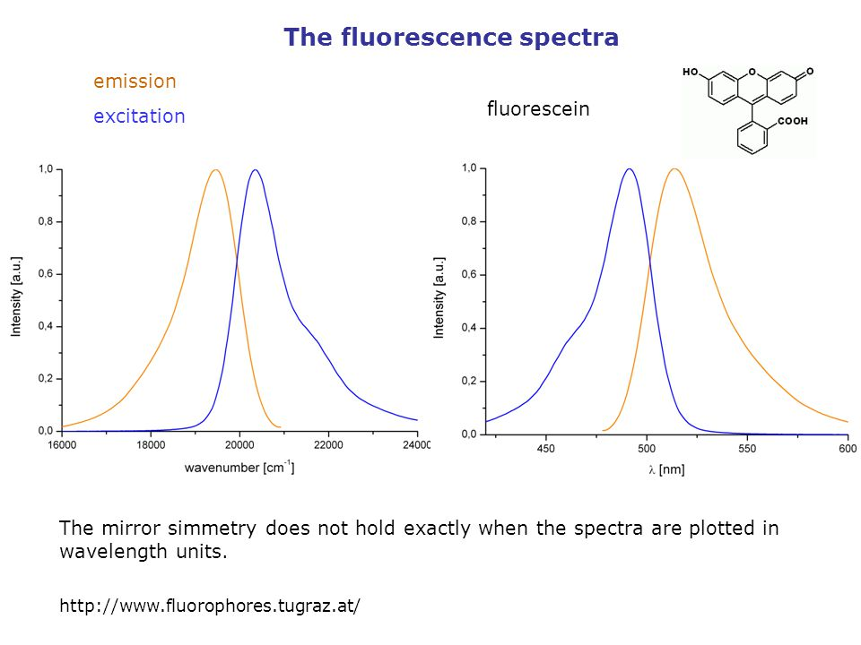 The fluorescence spectra