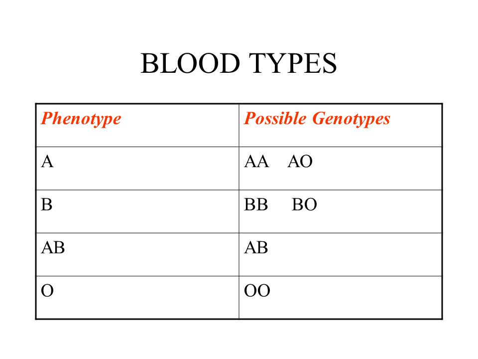 BLOOD TYPES Phenotype Possible Genotypes A AA AO B BB BO AB O OO