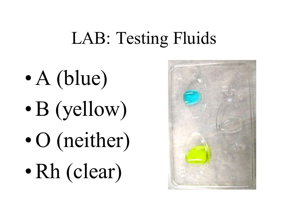 LAB: Testing Fluids A (blue) B (yellow) O (neither) Rh (clear)