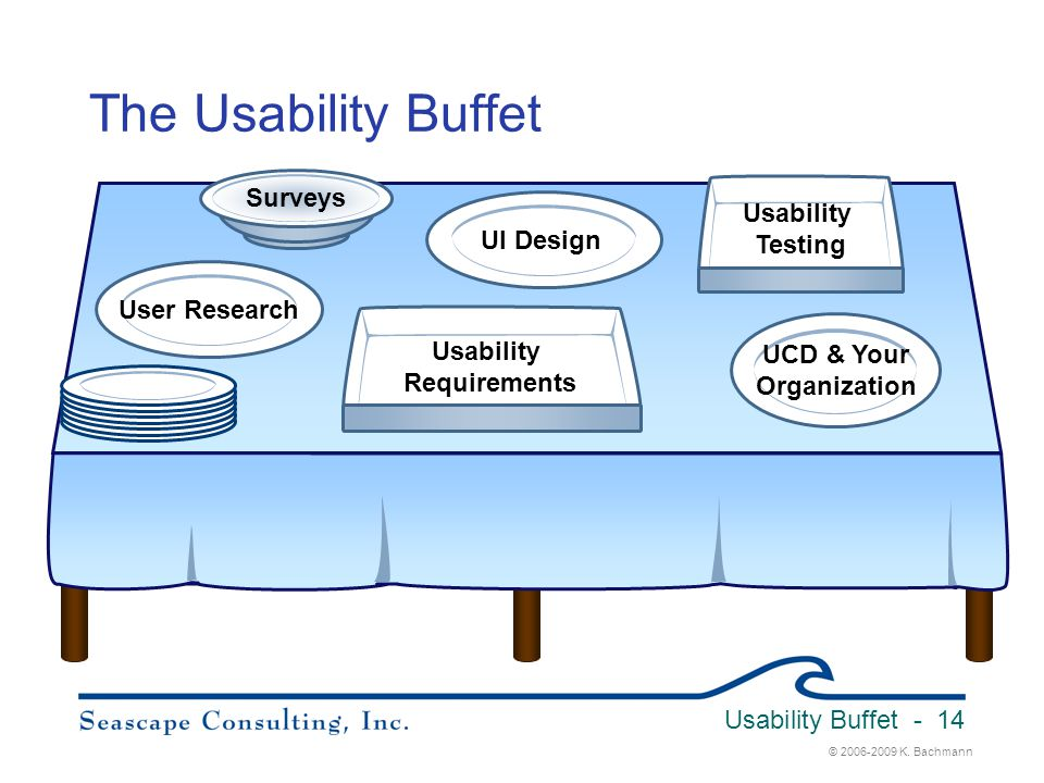 Usability Requirements UCD & Your Organization