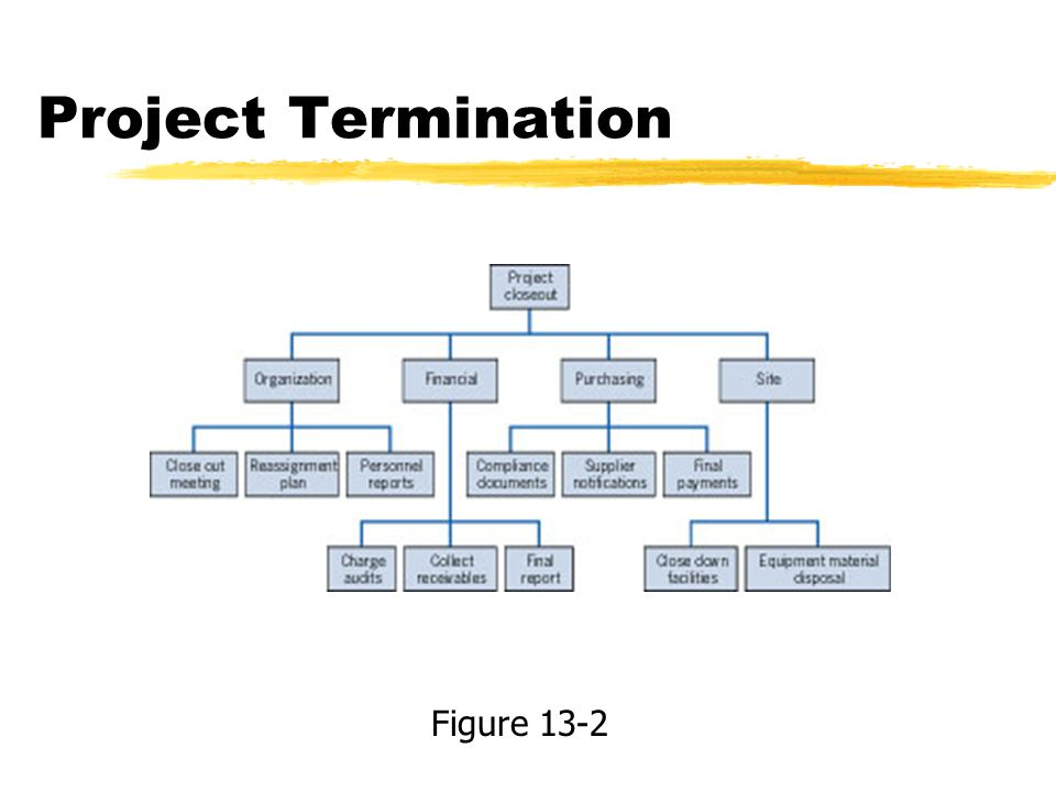 Project Termination Figure 13-2