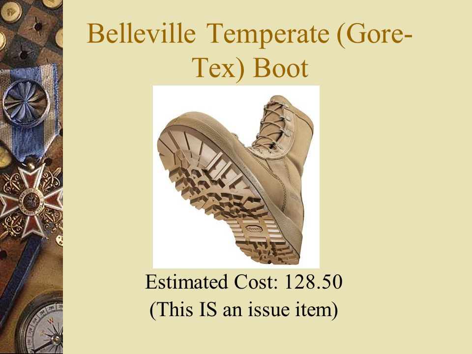 Belleville Temperate (Gore-Tex) Boot