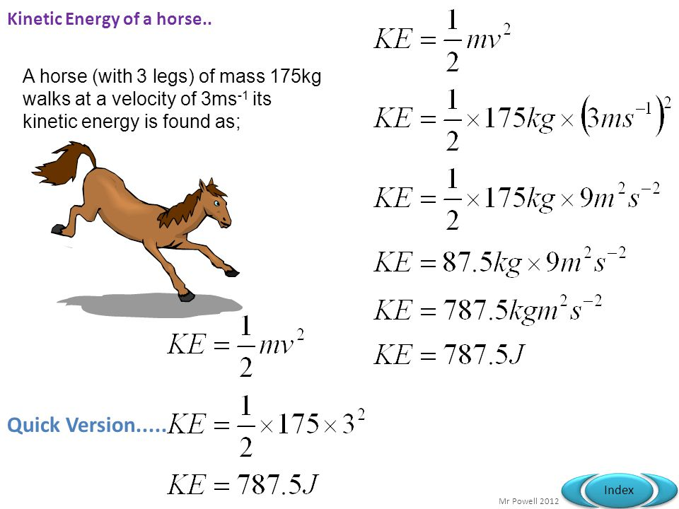 Kinetic Energy of a horse..